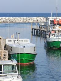 Leland Harbor